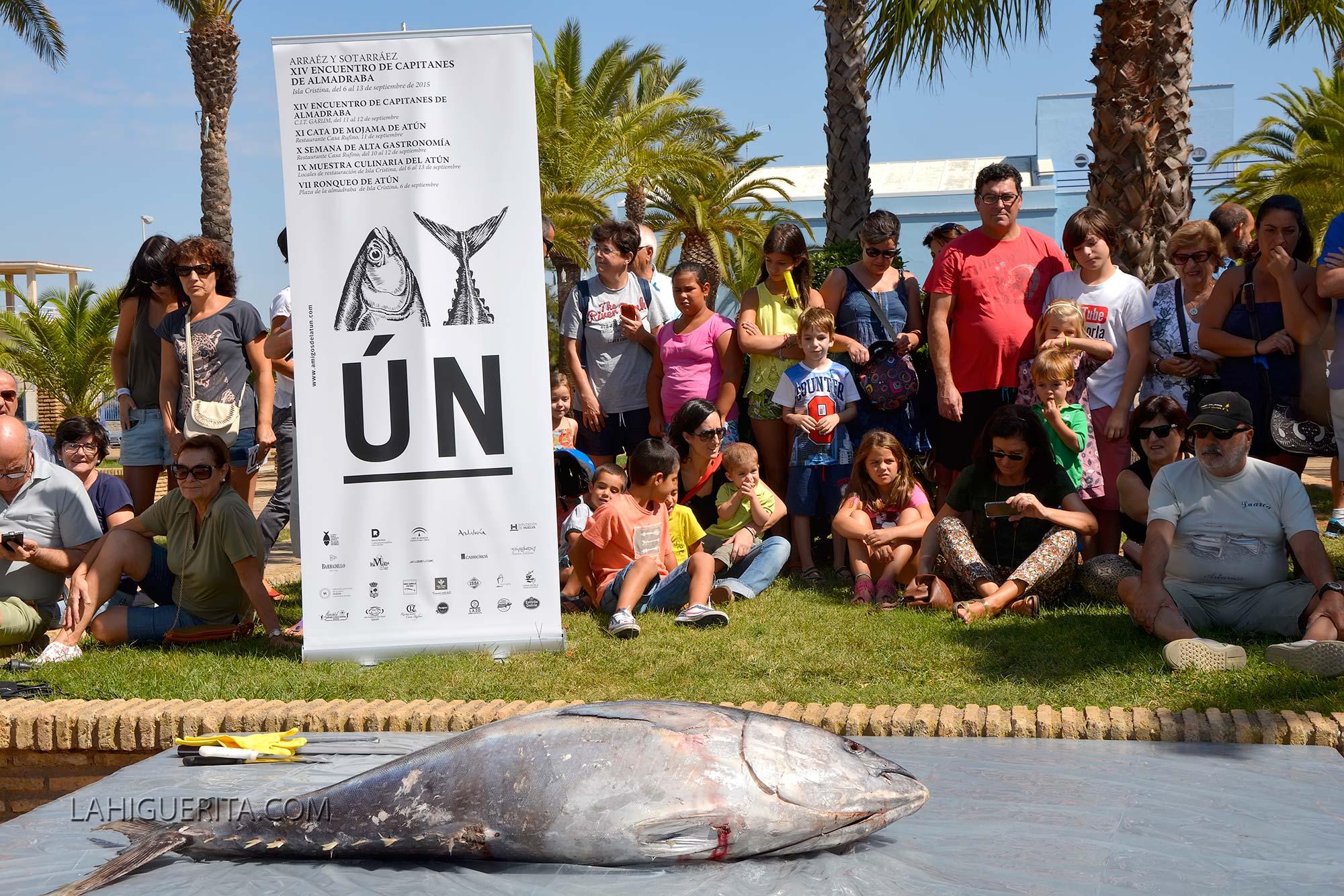 Ronqueo de un atún en la Plaza de la Almadraba de Isla cristina