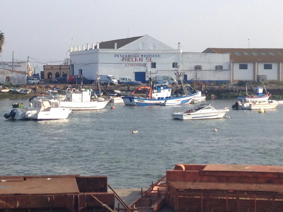 Huelva alcanza el segundo puesto a nivel andaluz en exportación de productos pesqueros