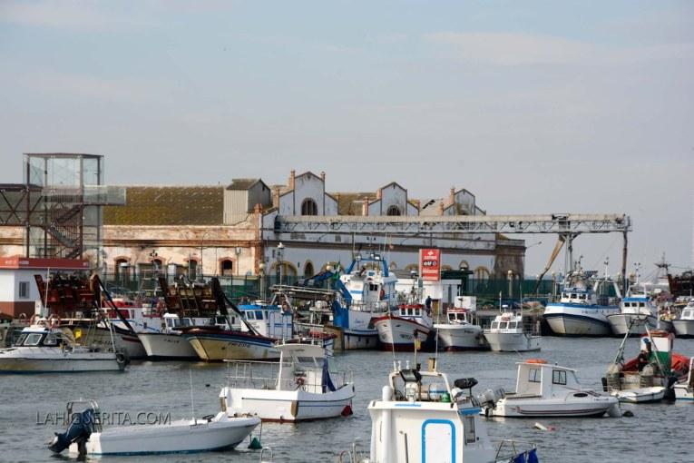 El sector pesquero del Cerco anuncia viaje a Madrid