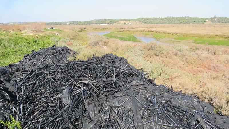Denuncian la existencia de un vertedero ilegal de plásticos agrícolas en el Paraje Natural Marismas de Isla Cristina