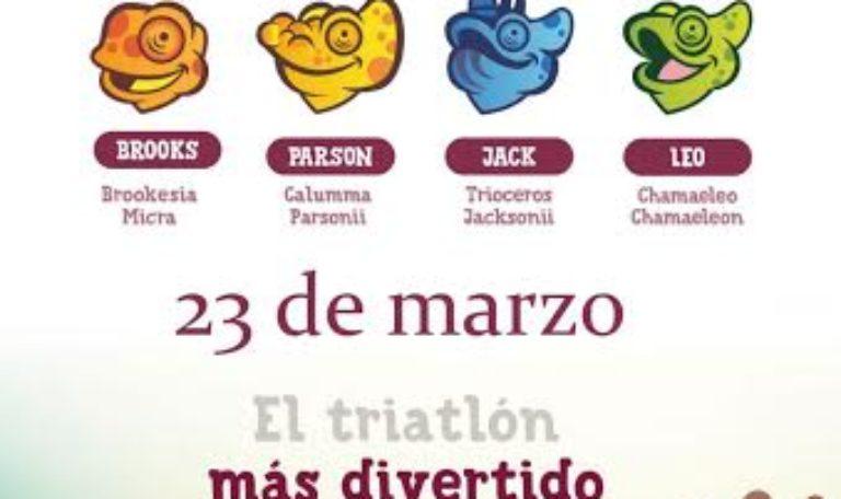 Actividades de promoción en la comunidad escolar de la Copa de Europa y Campeonato Iberoamericano de Triatlón Huelva 2019