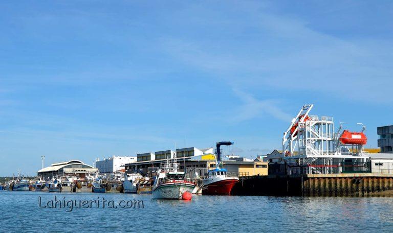La lonja de Isla Cristina reclama una reunión para mejorar infraestructuras y servicios